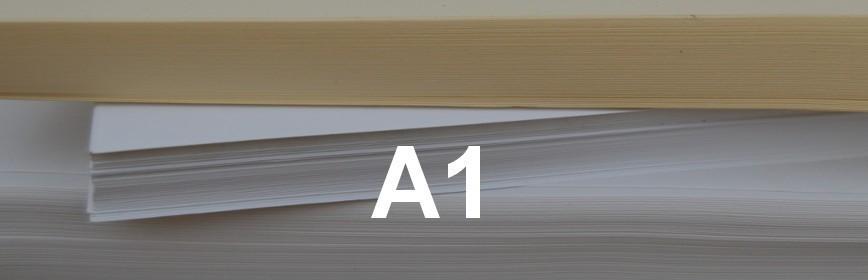 A1 Paper Size